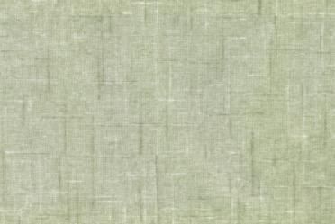 グリーン・フロス FB1221-015