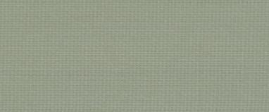 アボカド CS370-015
