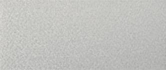CS37E0-461 パール・ホワイト